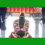 பொன்னாங் கன்னித் தைலம் – இராமதேவர்