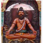 வேலிப் பருத்தி – போகர்